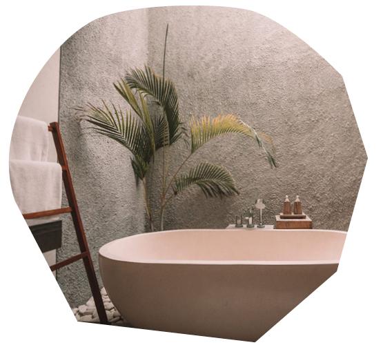 Biophilic Interior Design for Wellness Benefits