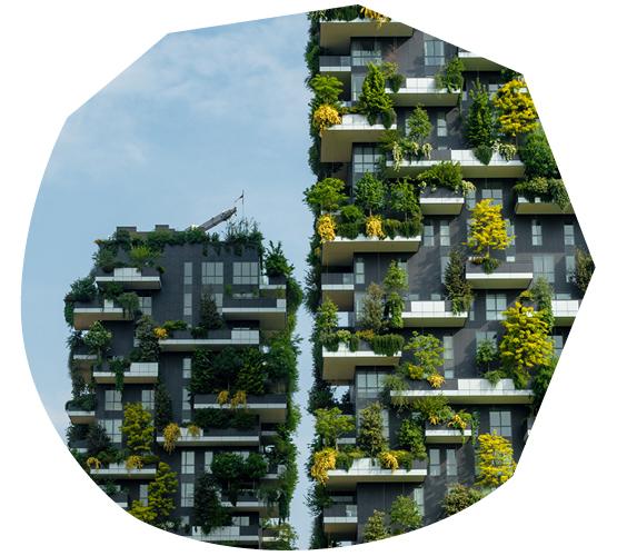 Elevating Nature: Milan's Bosco Verticale