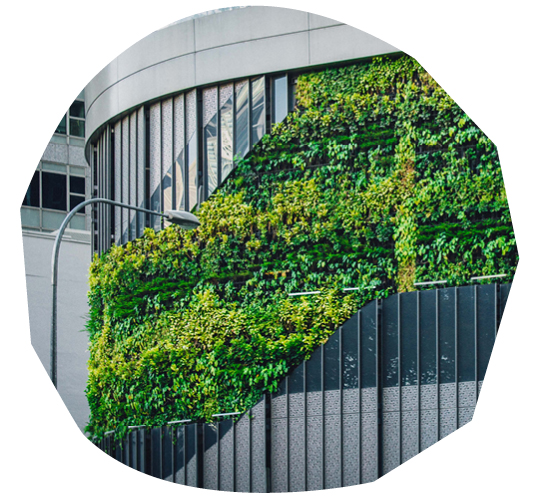 Sustainable Construction and Biophilia Top Industry Trend Report